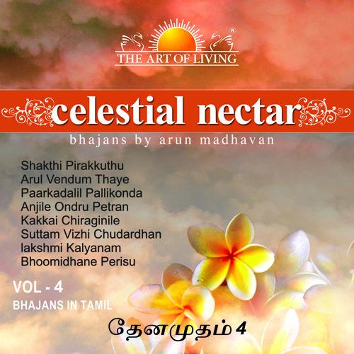 Celestial Nectar krishna songs album vol 4 by art of living