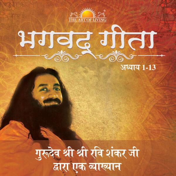 Bhagvad gita in Hindi by art of living